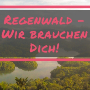 Regenwald-Projekt Global Tree