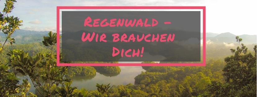 Regenwald-Projekt Global Tree