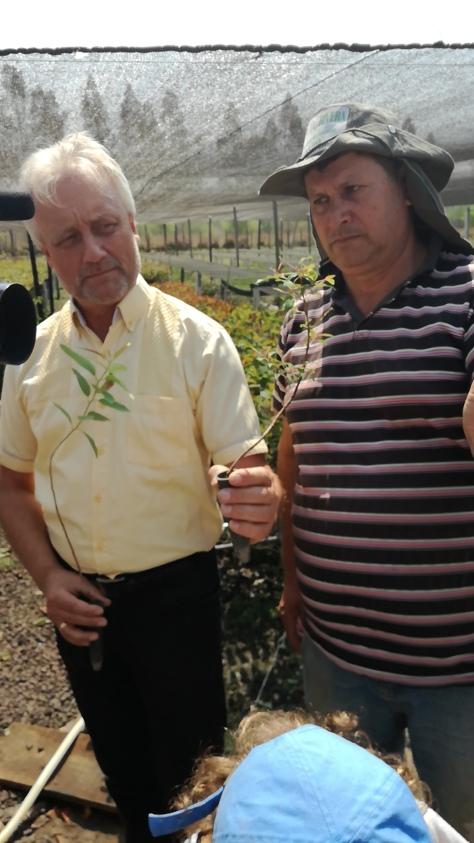 Andreas mit Vorarbeiter und Mini-Eukalyptus